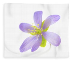 Hepatica On White Fleece Blanket