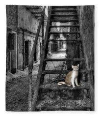 Here Kitty Kitty Kitty... Fleece Blanket