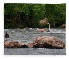 Heron Paradise Fleece Blanket