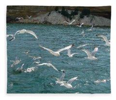 Herring Gulls At Pictured Rocks Fleece Blanket