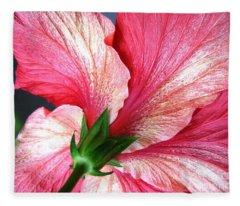 Hibiscus #5 Fleece Blanket