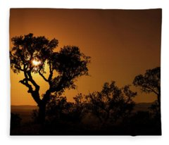 Hide And Seek Fleece Blanket