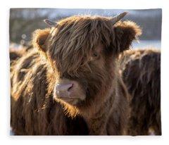 Highland Baby Coo Fleece Blanket