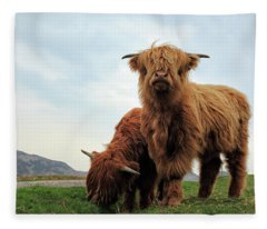 Highland Cow Calves Fleece Blanket