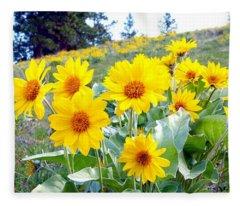 Highland Sunflowers Fleece Blanket