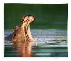 Hippopotamus Fleece Blanket