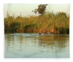 Hippos, South Africa Fleece Blanket