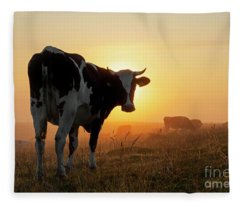 Holstein Friesian Cow Fleece Blanket