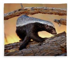 Honey Badger  Fleece Blanket
