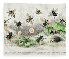 Honey Bees, Humble Bee Fleece Blanket