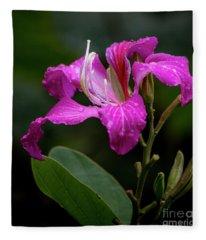 Hong Kong Orchid Fleece Blanket