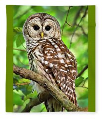 Fleece Blanket featuring the photograph Hoot Owl by Christina Rollo