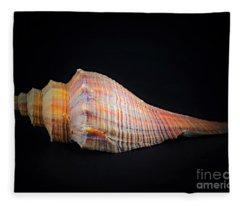 Horse Conch Fleece Blanket