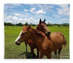 Horse Cuddles Fleece Blanket