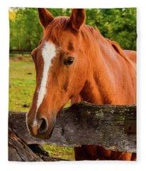 Horse Friends Fleece Blanket