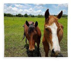 Horse Friendship Fleece Blanket