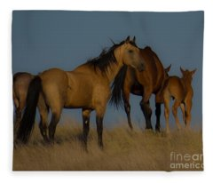 Horses 1 Fleece Blanket