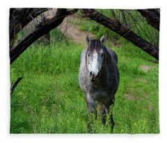 Horse's Arch Fleece Blanket