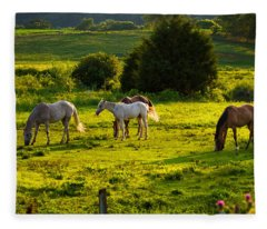 Horses Grazing In Evening Light Fleece Blanket