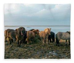 Horses In Iceland Fleece Blanket