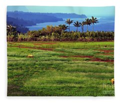 Horses On The Garden Island Of Kauai, Hawaii, Usa Fleece Blanket