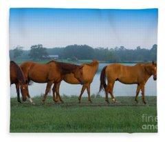 Horses On The Walk Fleece Blanket