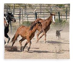 Horses Unlimited #3a Fleece Blanket