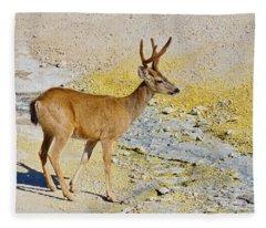 Hot Foot - Columbia Deer Fleece Blanket