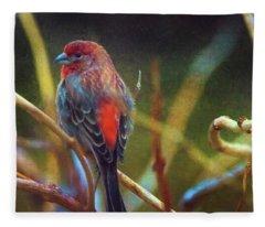 House Finch Fleece Blanket