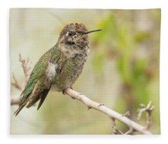 Hummingbird 7485-120117-1cr Fleece Blanket