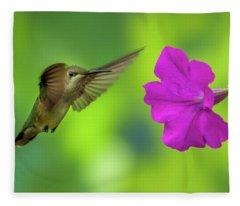 Hummingbird And Flower Fleece Blanket