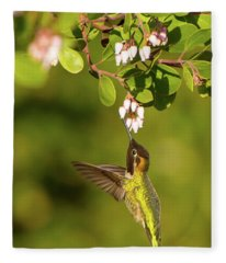 Hummingbird And Manzanita Blossom Fleece Blanket