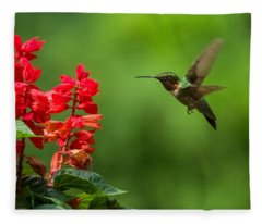Hummingbird And Scarlet Sage Fleece Blanket