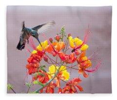 Hummingbird At Work Fleece Blanket