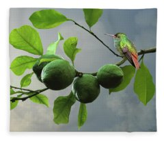 Hummingbird In Lime Tree Fleece Blanket