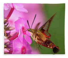 Hummingbird Moth Feeding 1 Fleece Blanket