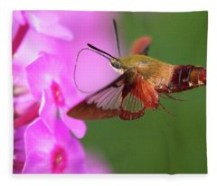 Hummingbird Moth Feeding 2 Fleece Blanket