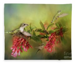 Hummingbird Paradise Fleece Blanket