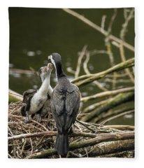 Hungry Pied Shag Chicks Fleece Blanket