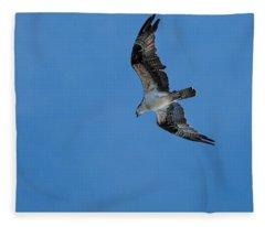 Hunting Osprey Fleece Blanket
