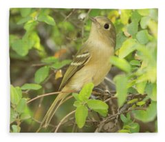 Hutton's Vireo 2541-112117-1 Fleece Blanket