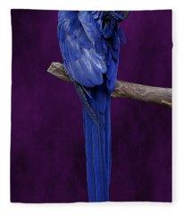Hyacinth Macaw Panoramic Fleece Blanket