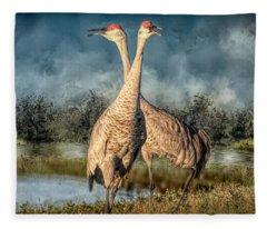 I Got You Babe Fleece Blanket