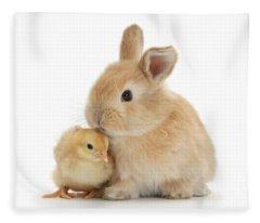 I Love To Kiss The Chicks Fleece Blanket