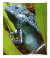 Blue Spotted Frog Fleece Blanket