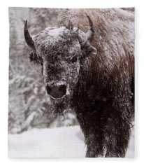 Ice Cold Winter Buffalo Fleece Blanket
