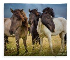 Icelandic Trio Fleece Blanket