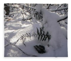 Icy Fern Fleece Blanket