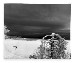 Idaho Winter  Fleece Blanket