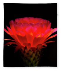 Illumination Fleece Blanket